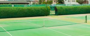 テニス動画毎日更新スケジュール